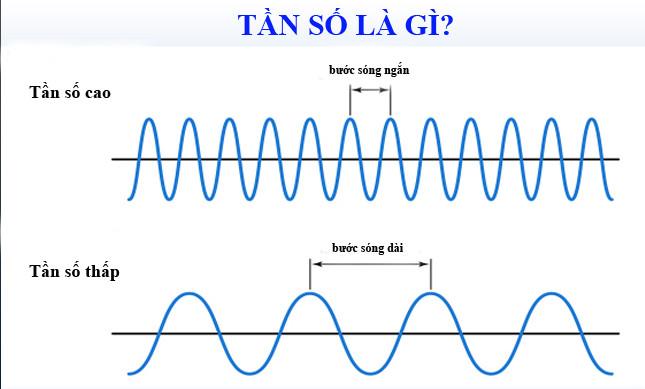 tần số là gì đó là số lần của một hiện tượng lặp lại trên một đơn vị thời gian